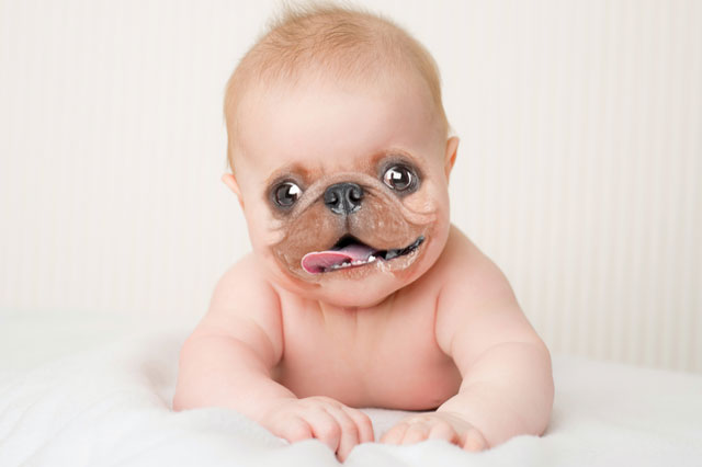 You Have An Ugly Baby - Ilfusion Creative