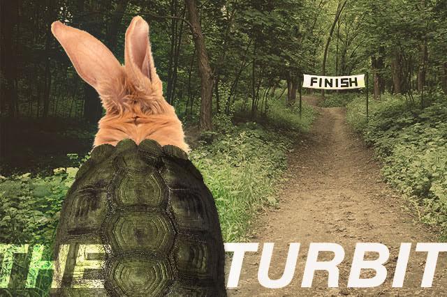 Turbit